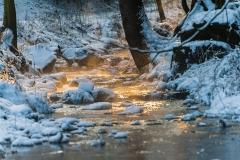Winterstimmung im Silberbachtal