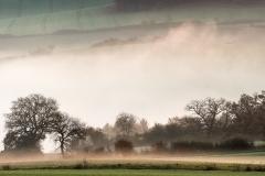 Nebel-zieht-durchs-Tal