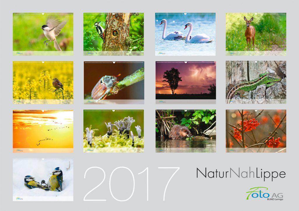 FotoAG-Kalender 2017