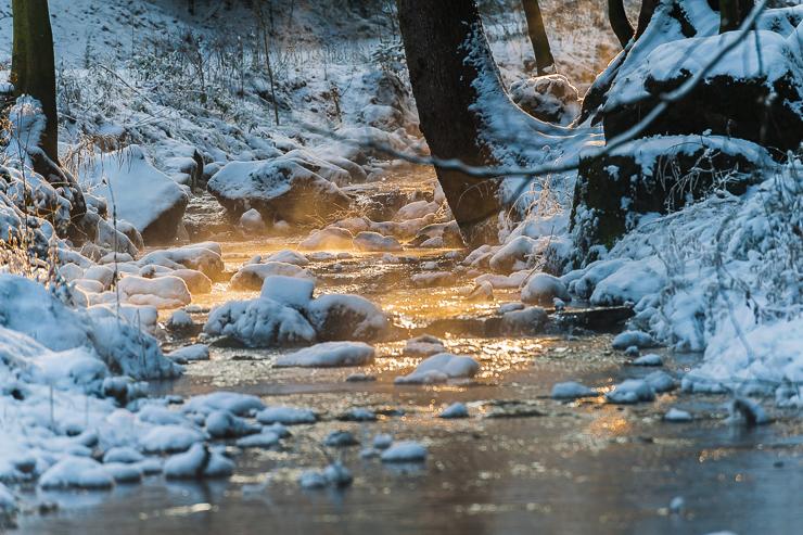 Zauberhaftes Sonnenlicht an einem kalten Wintertag am Silberbachtal –© Gerhard Tegeler