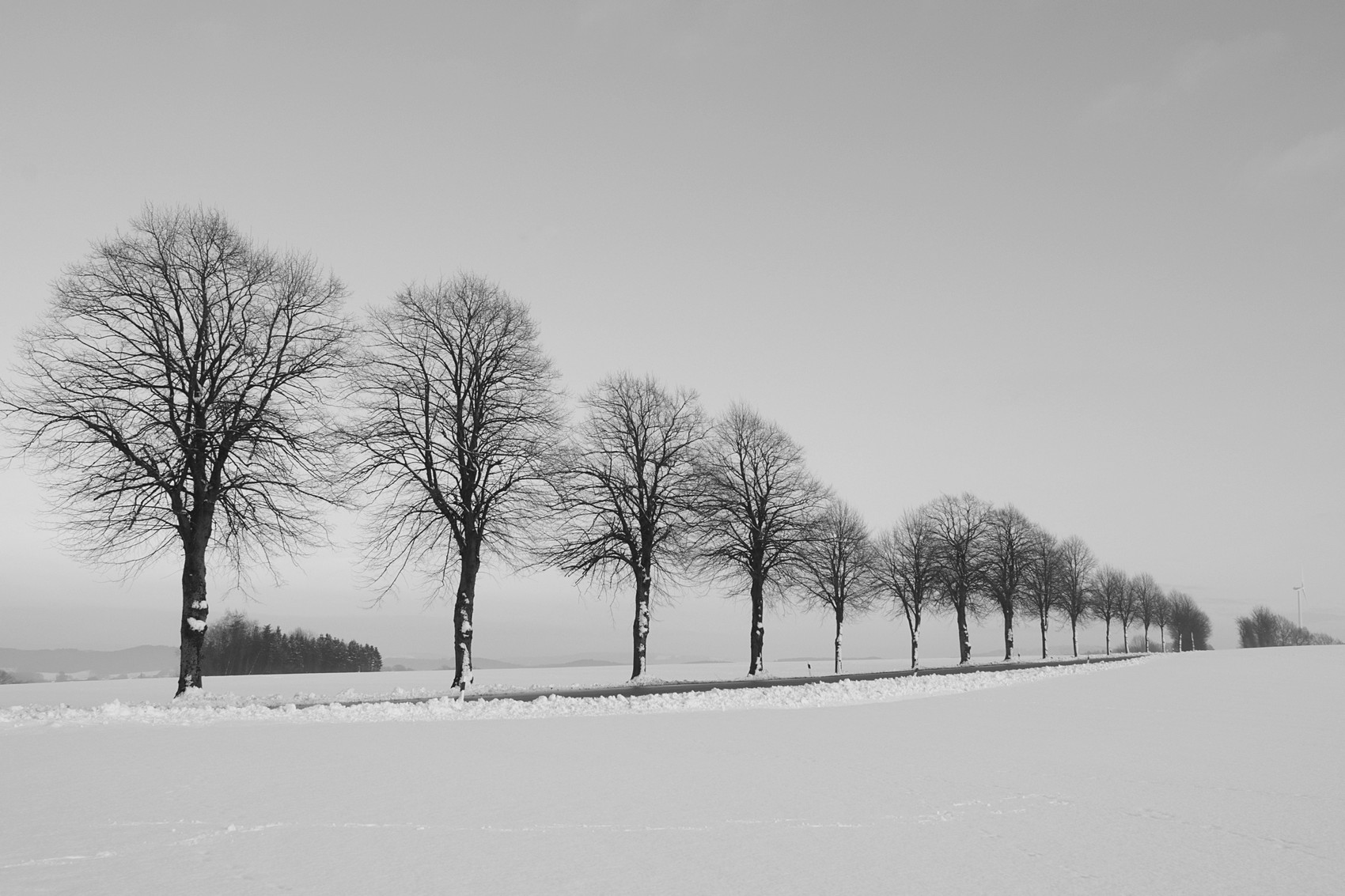 Strasse zum Kleeberg © Renate Mahnert