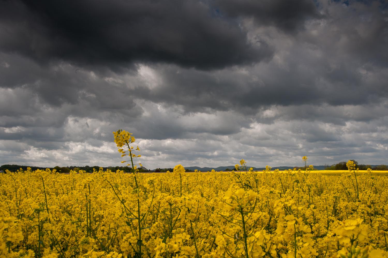 Wolkenschauspiel in Papenhausen © Gerhard Tegeler