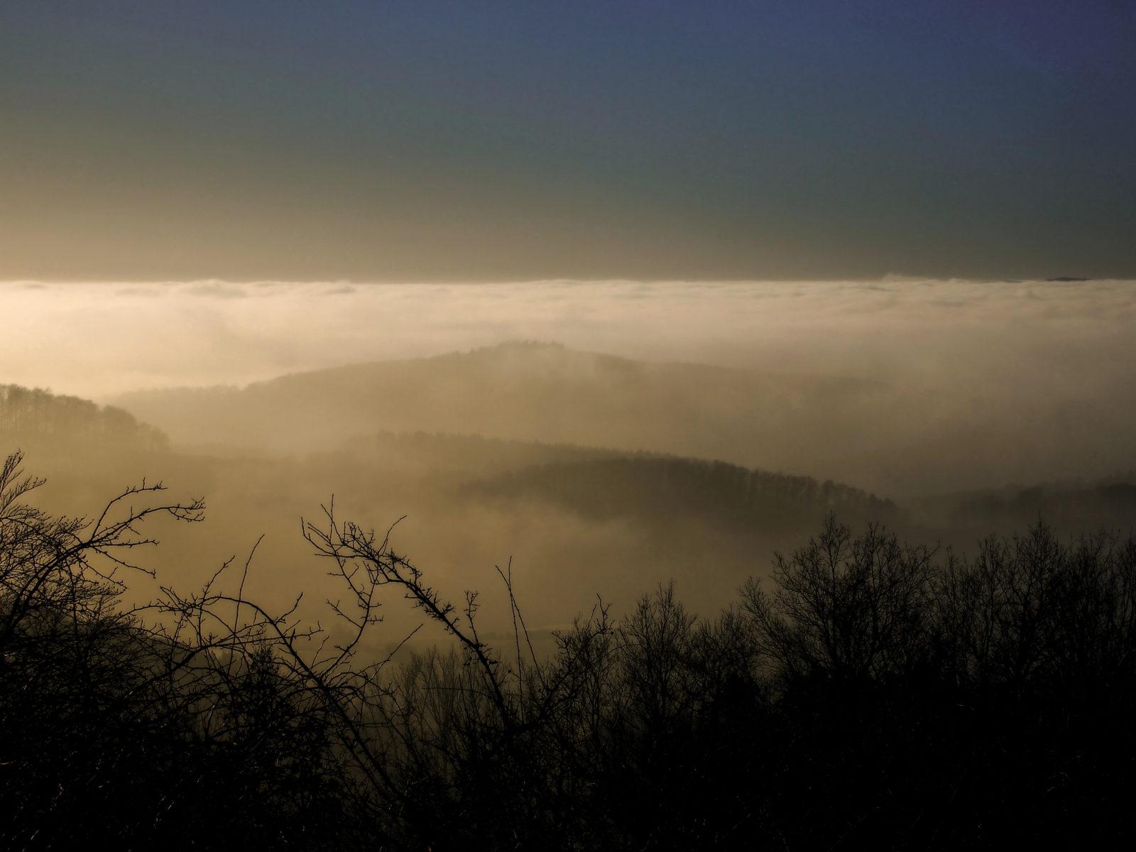Lippe erwacht! Blick über das vernebelte Lippe vom Steinberg in Schwelentrup © Thomas Schubert
