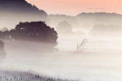 Frühmorgens, wenn der Nebel die Felder bedeckt © Heike Reineke